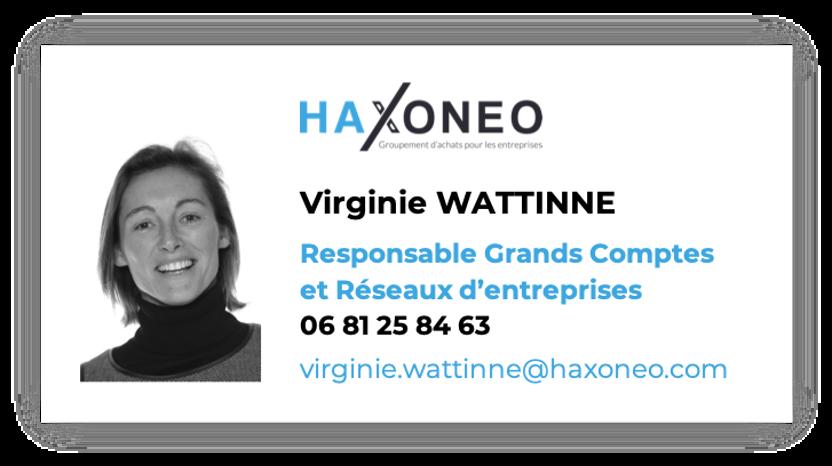Virginie Wattinne